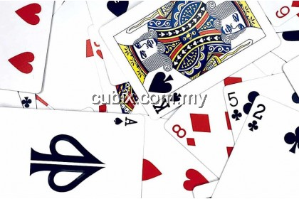 STOICS Playing Cards Bicycle Ellusionist Theory11